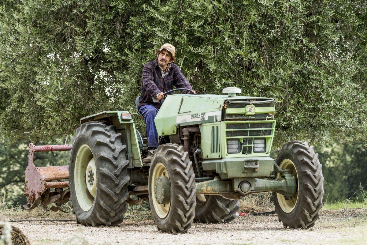 La nostra terra: Sergio Rubini sul trattore in una scena del film