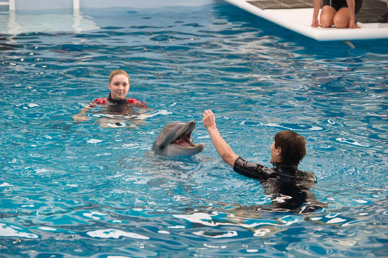 L'incredibile storia di Winter il delfino 2: Cozi Zuehlsdorff con Nathan Gamble con l'amico delfino in una scena del film