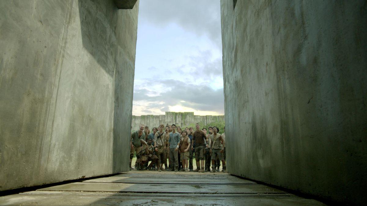 Maze Runner - Il labirinto: una scena di gruppo tratta dal film