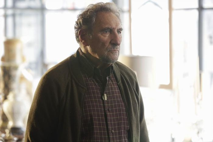 Forever: Judd Hirsch nell'episodio Fountain of Youth