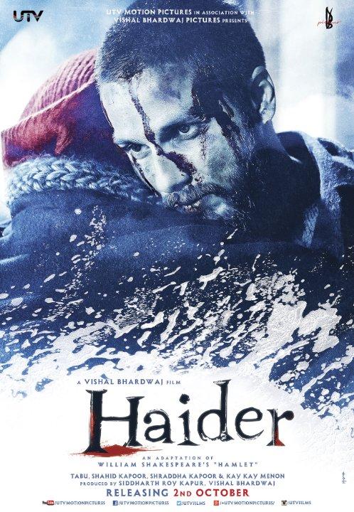 Locandina di Haider