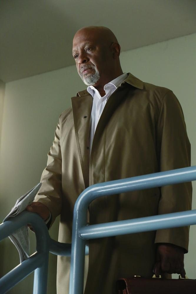 Grey's Anatomy: l'attore James Pickens Jr. in Puzzle With a Piece Missing