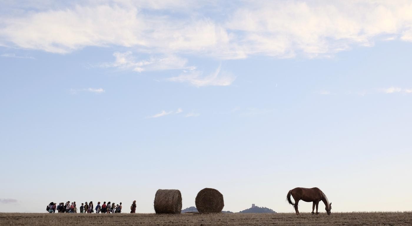 La scuola più bella del mondo: gita nella campagna toscana per la scolaresca