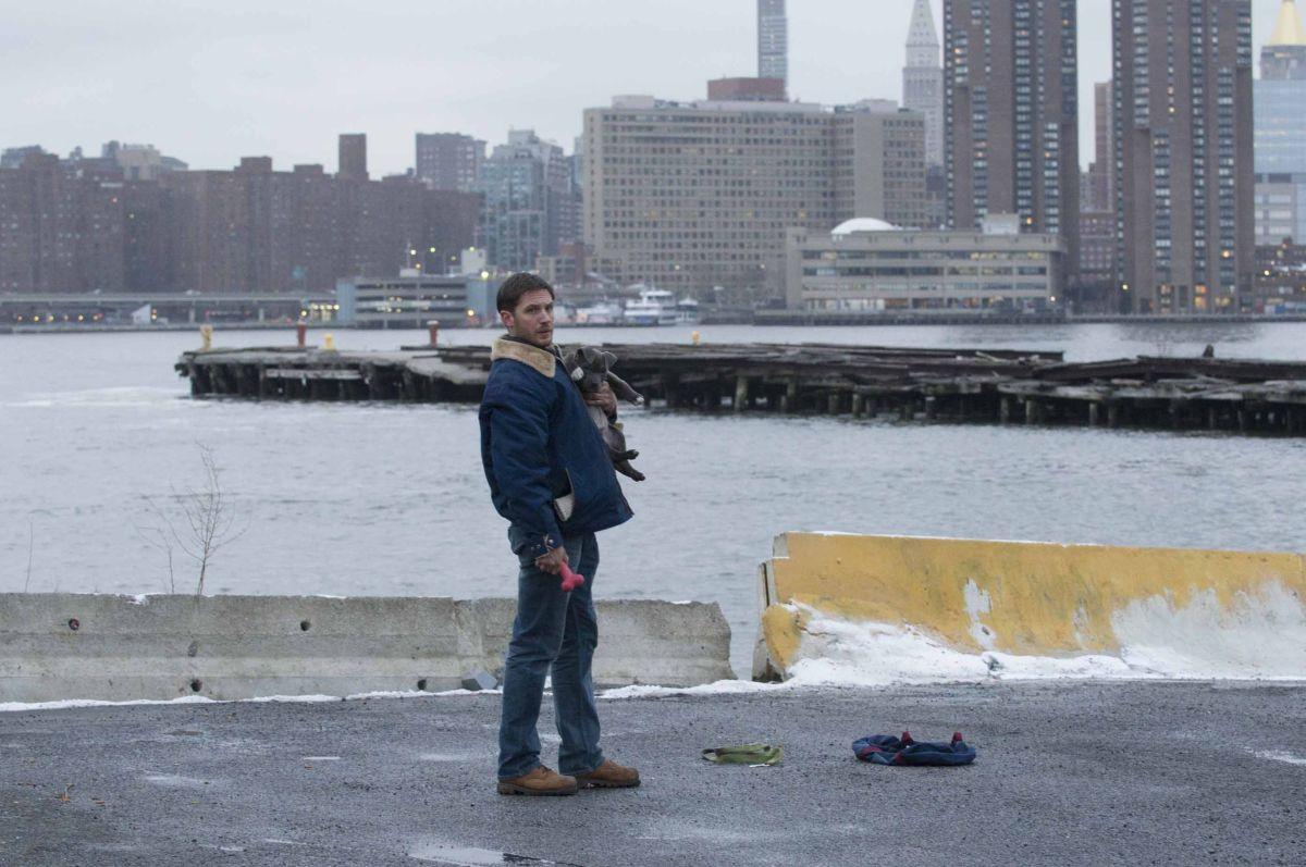 Chi è senza colpa: Tom Hardy sulla baia di New York insieme al suo cucciolo