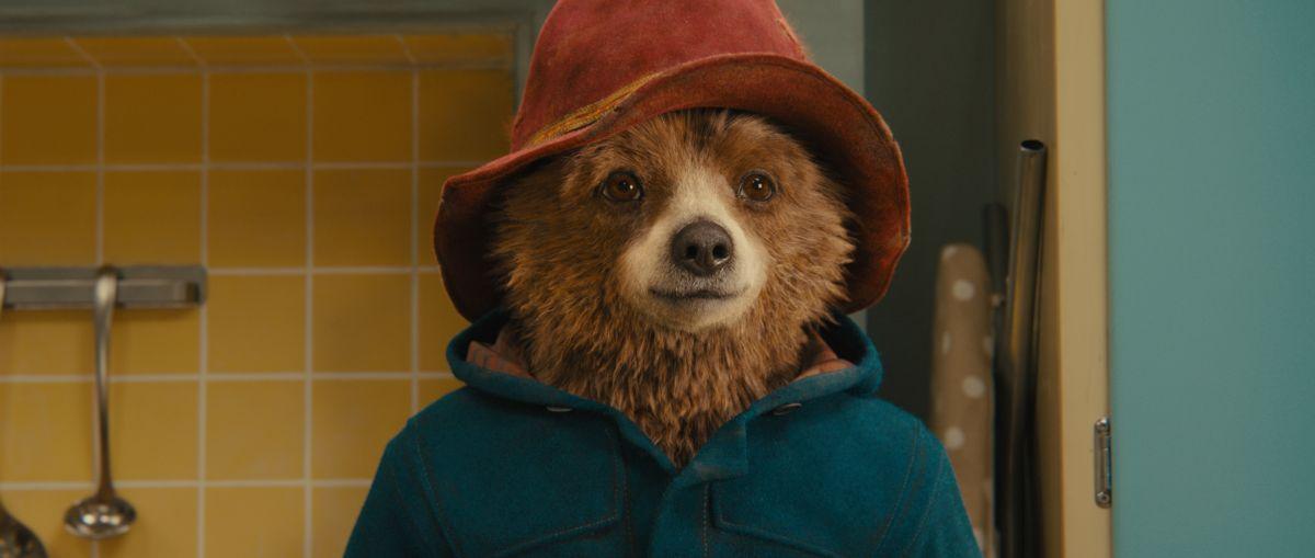 Paddington: il simpatico orsetto in un primo piano tratto dal film