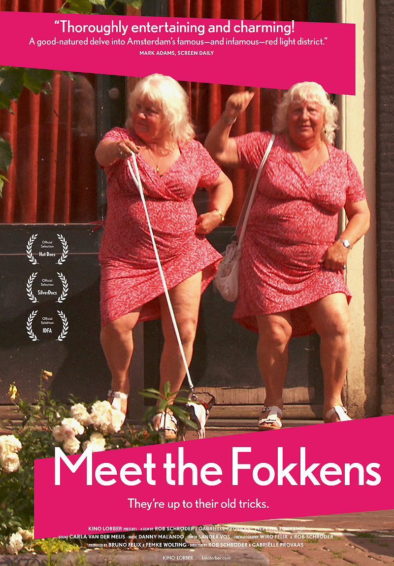 Locandina di Meet The Fokkens