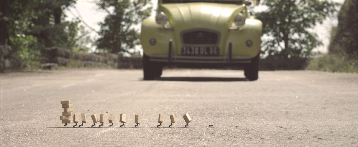 MINUSCULE - La valle delle formiche perdute: formiche alle prese con una scorta di zollette in una scena del film