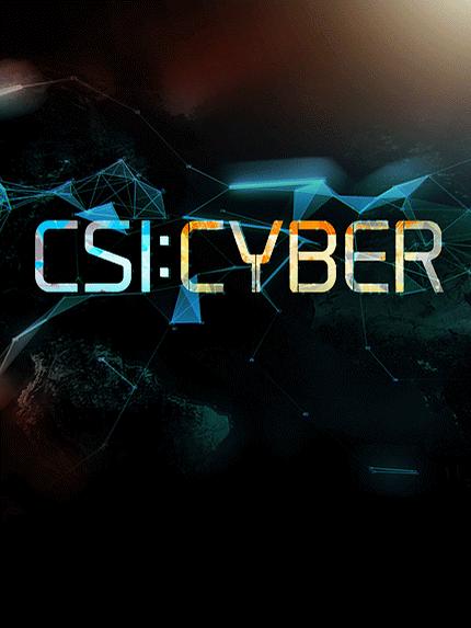 CSI Cyber: la locandina della serie