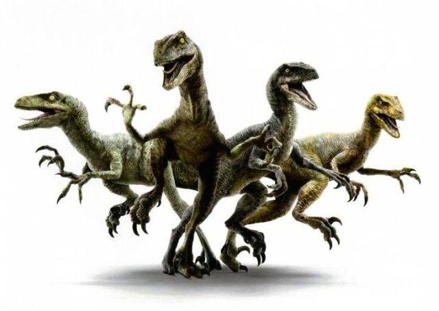 Jurassic World: ecco la squadra dei Velociraptor