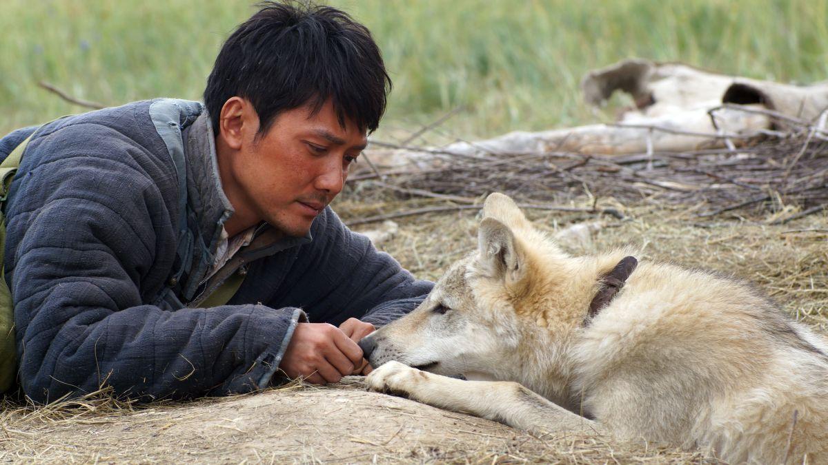 L'ultimo lupo: il protagonista del film Feng Shao-feng in una tenera scena del film