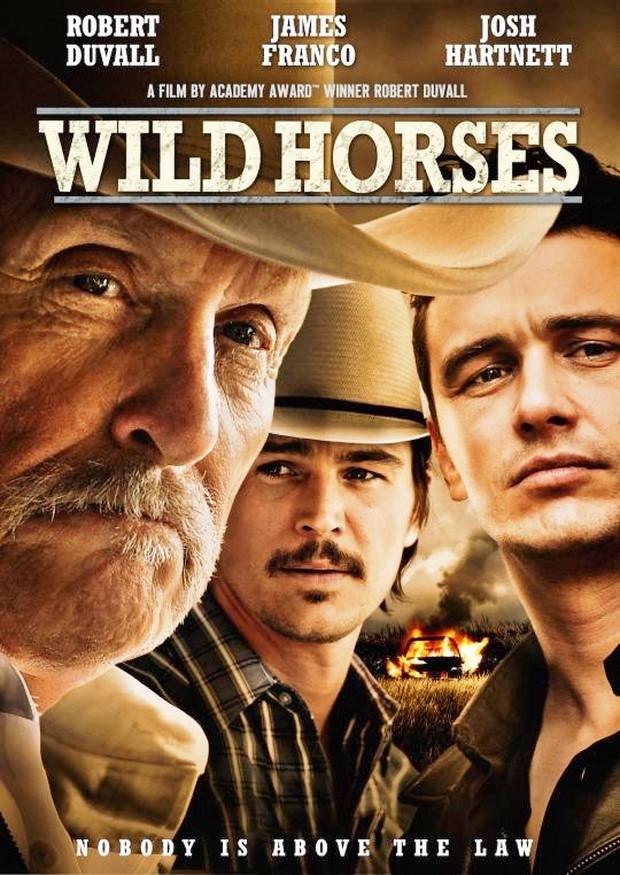 Locandina di Wild Horses