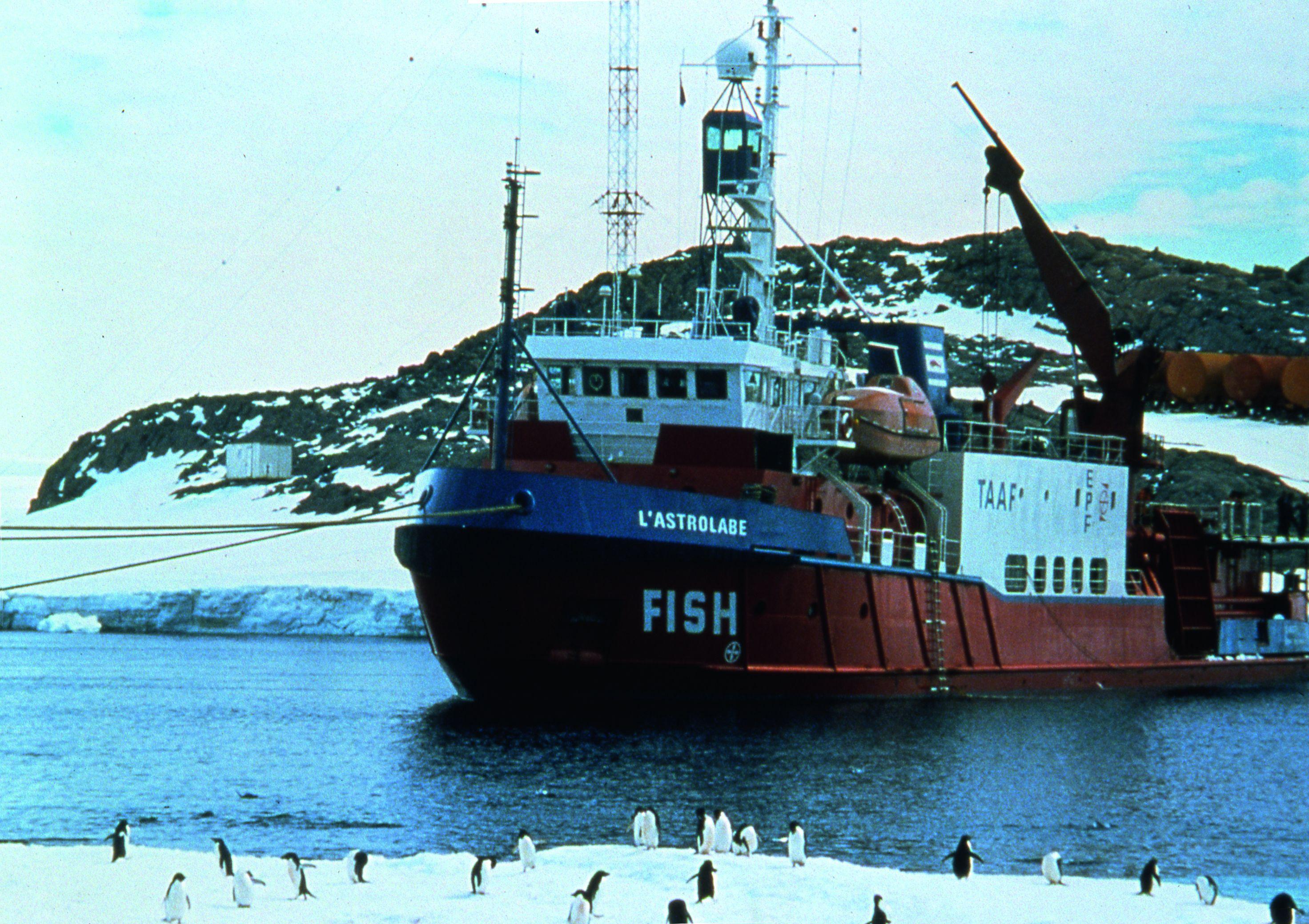 Ice and the Sky: un'0immagine del documentario di Luc Jacquet sull'Antartide