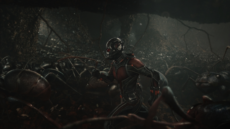 Ant-Man: Paul Rudd in fuga tra le formiche