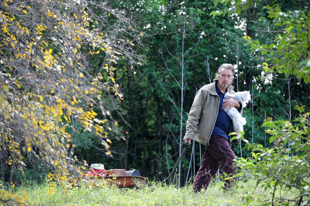 Manglehorn: Al Pacino col suo amico felino in una scena del film