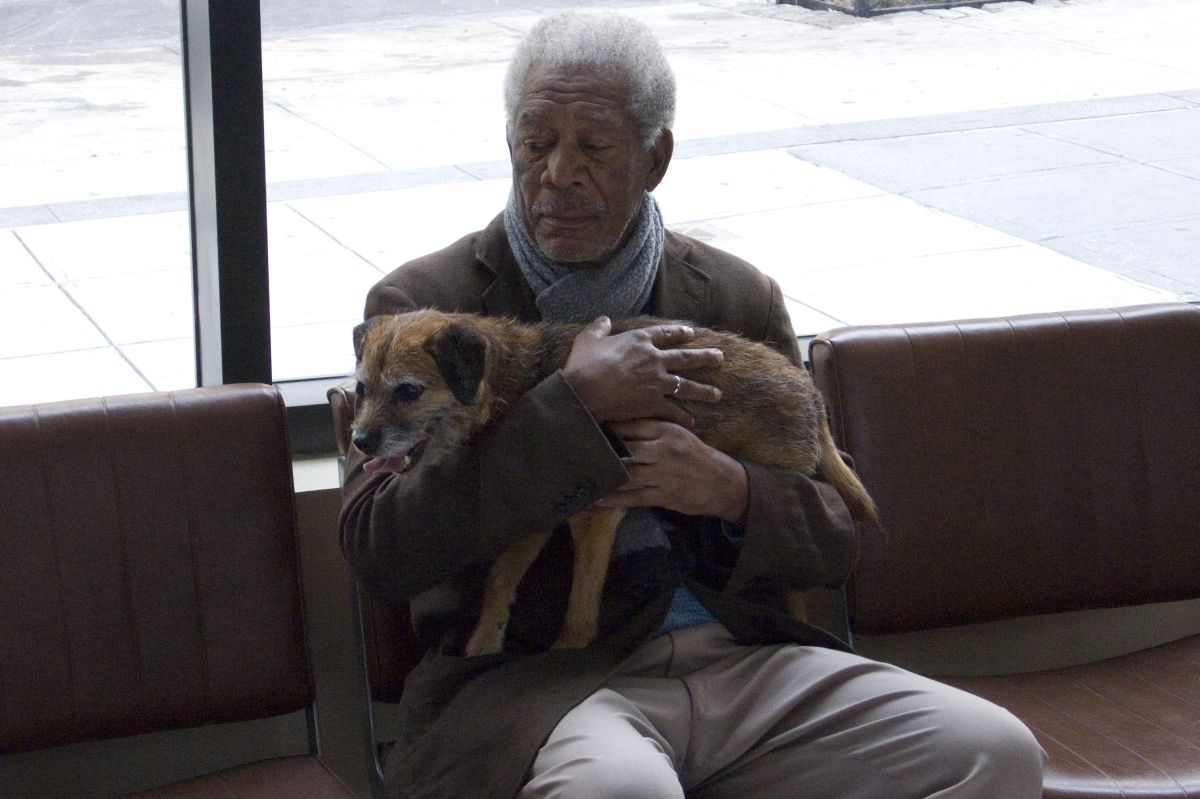 Ruth & Alex - L'amore cerca casa: Morgan Freeman in una buffa immagine tratta dalla commedia
