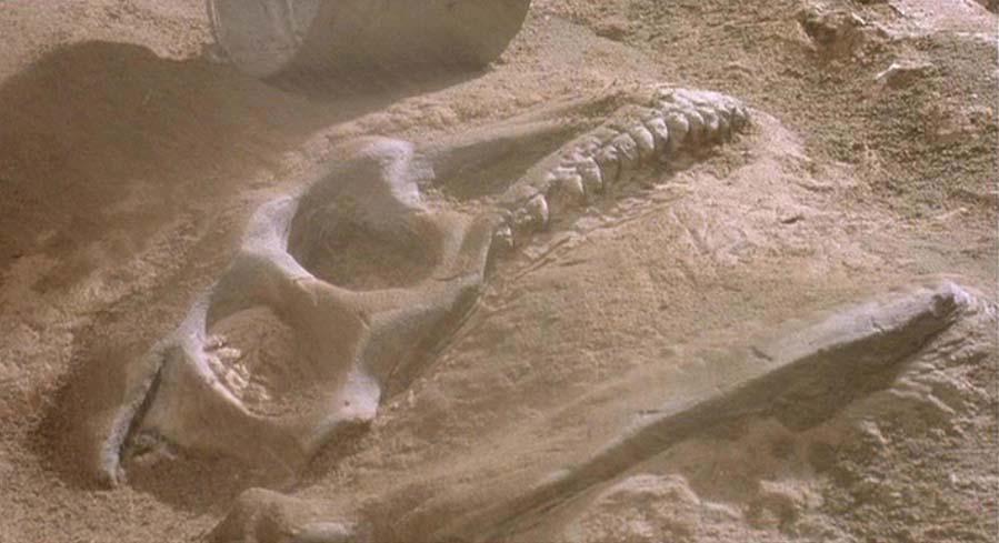 Jurassic Park: un'immagine dello scavo