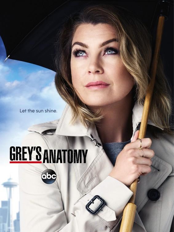 Grey's Anatomy: la locandina per la dodicesima stagione