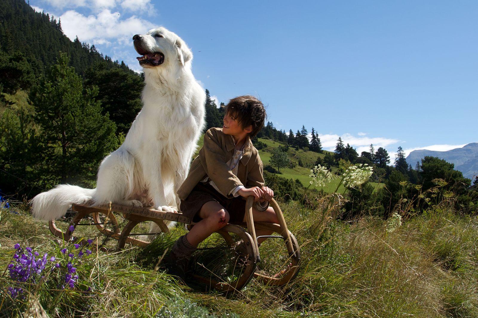 Belle & Sebastien - L'avventura continua: Félix Bossuet si diverte con l'amato cane in una scena del film