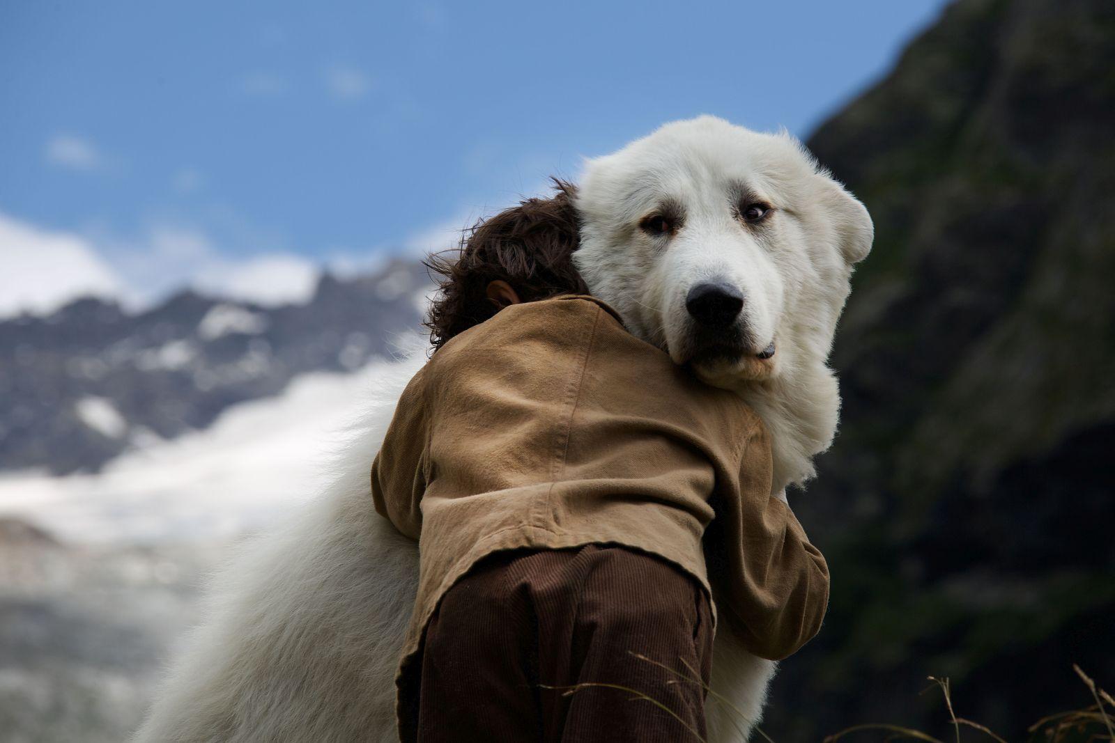 Belle & Sebastien - L'avventura continua: Félix Bossuet abbraccia il suo cane