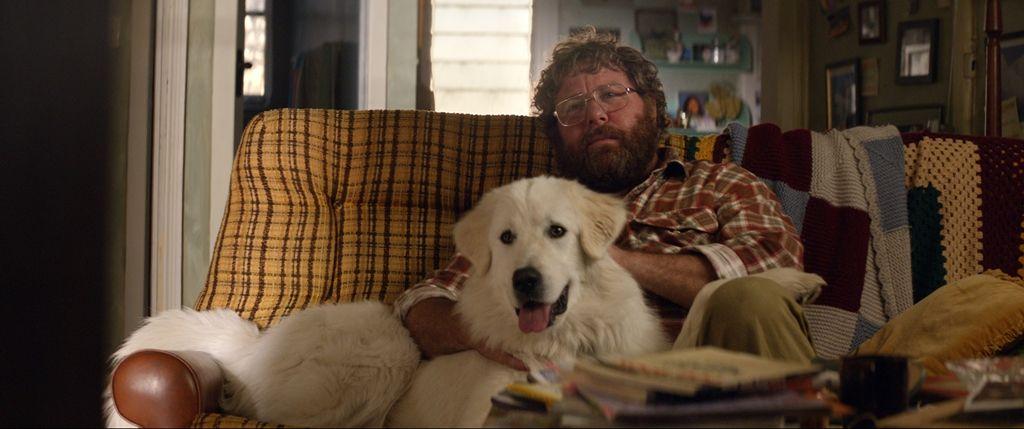 Giotto, l'amico dei pinguini: Shane Jacobson e il cane Giotto in una scena del film