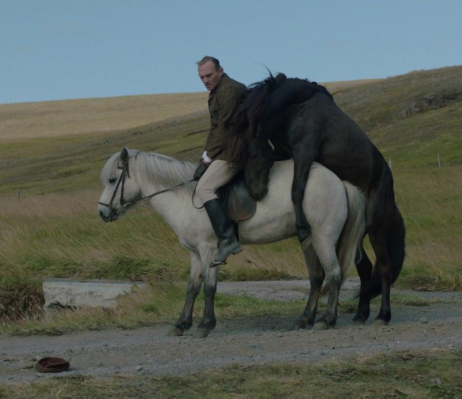 Storie di cavalli e di uomini: Ingvar Eggert Sigurðsson in un'immagine tratta dal film