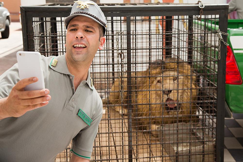 Quo vado?: Checco Zalone si fa un selfie con un leone in una scena del film