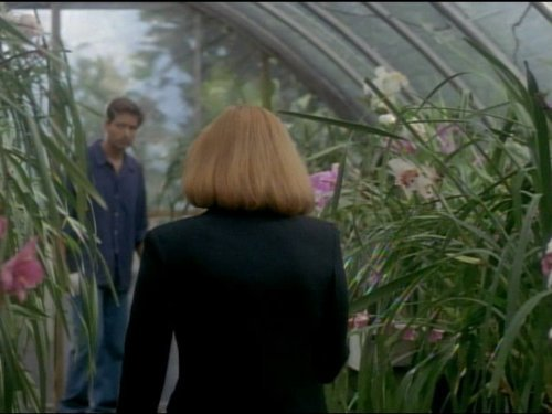X-Files: Una scena dell'episodio Il file da non aprire