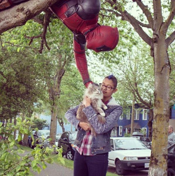 Deadpool: Ryan Reynolds in una foto del film