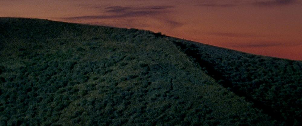 Montedoro: un'immagine del film