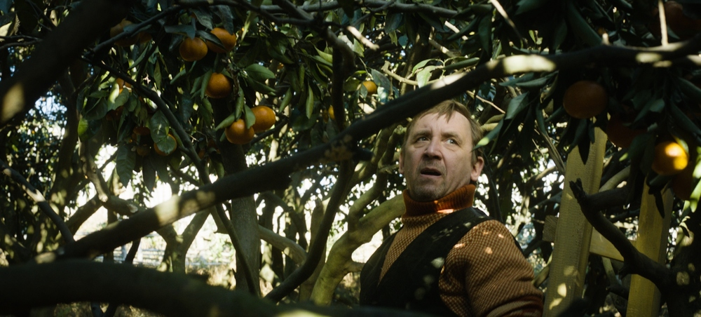 Tangerines - Mandarini: un'immagine tratta dal film