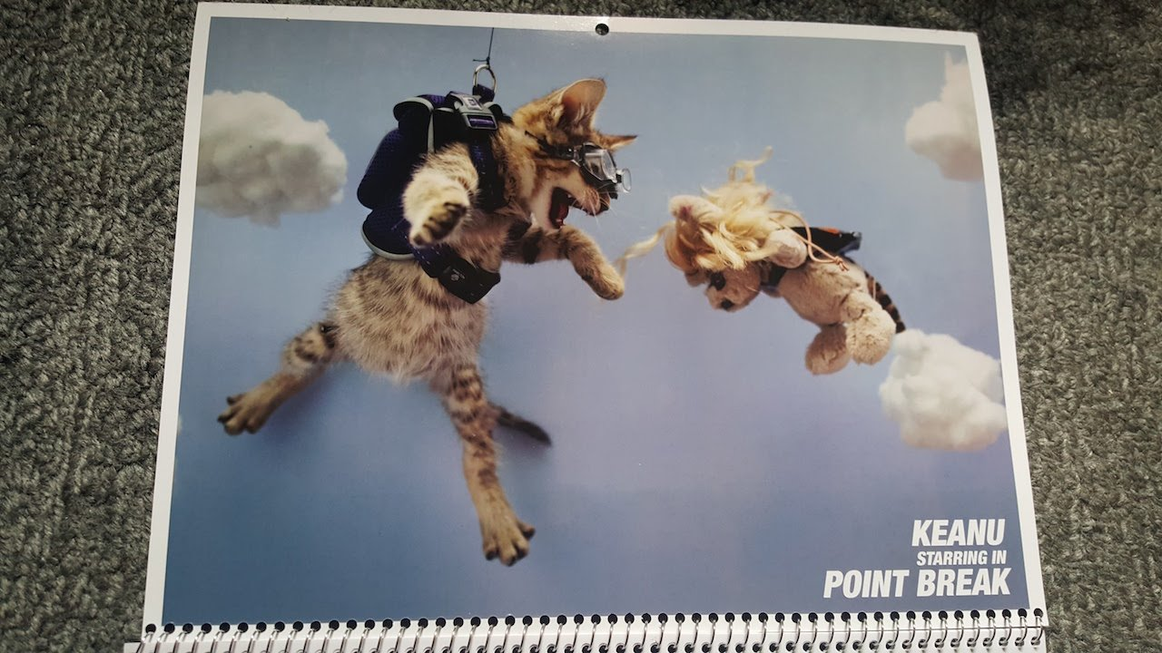 Keanu: la versione di Point Break presente nel calendario del gatto protagonista
