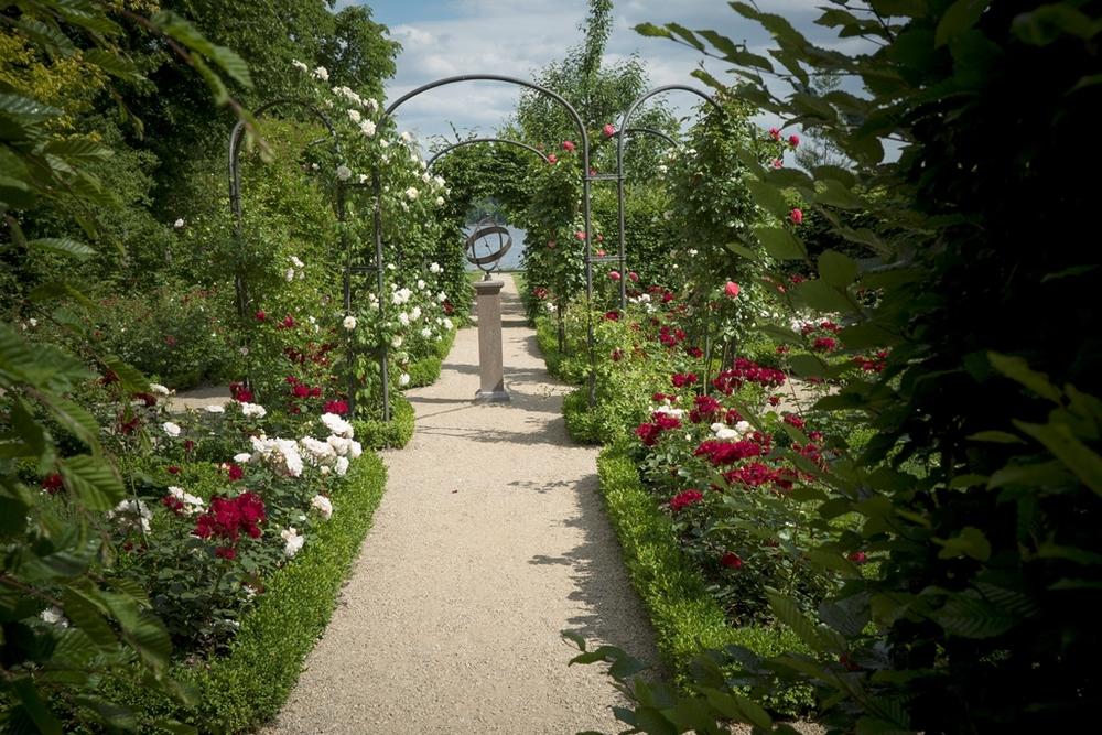 Immagini Di Giardini Moderni : Da monet a matisse l arte di dipingere il giardino moderno una