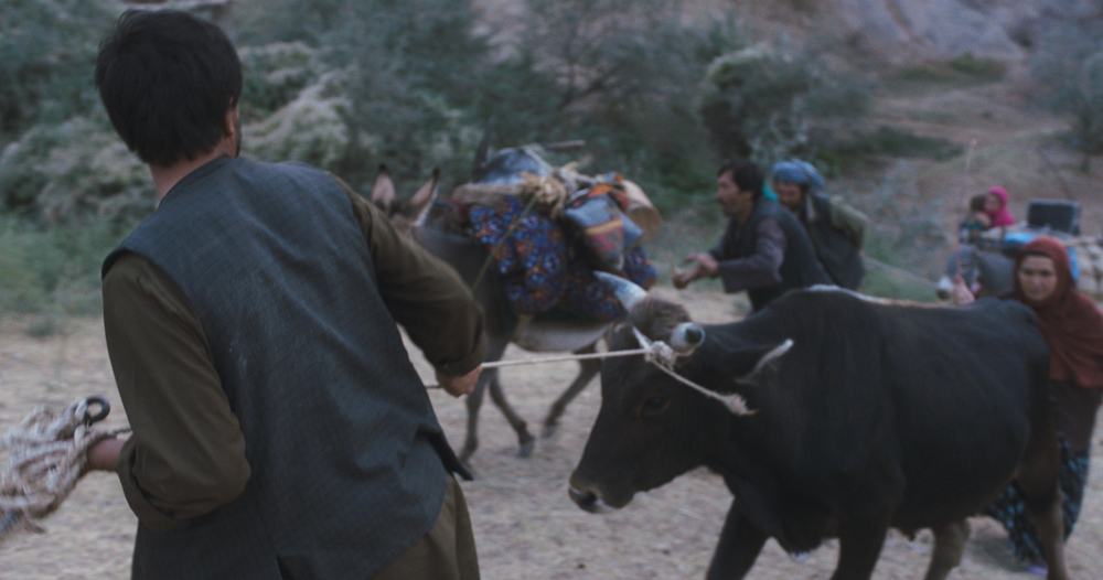 Wolf and Sheep: un'immagine tratta dal film