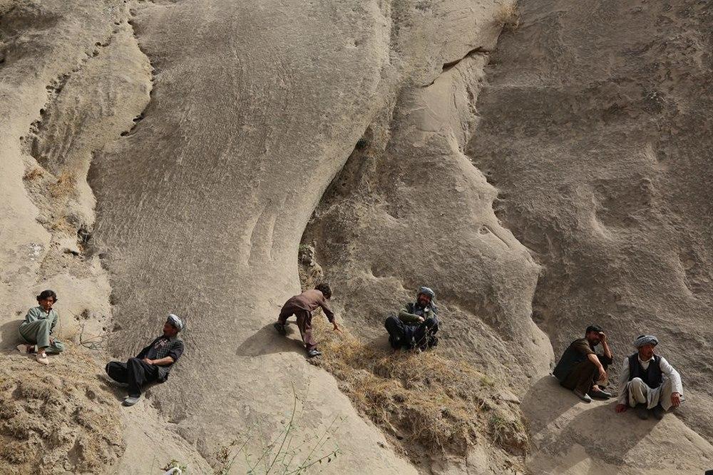 Wolf and Sheep: un'immagine dall'alto del film