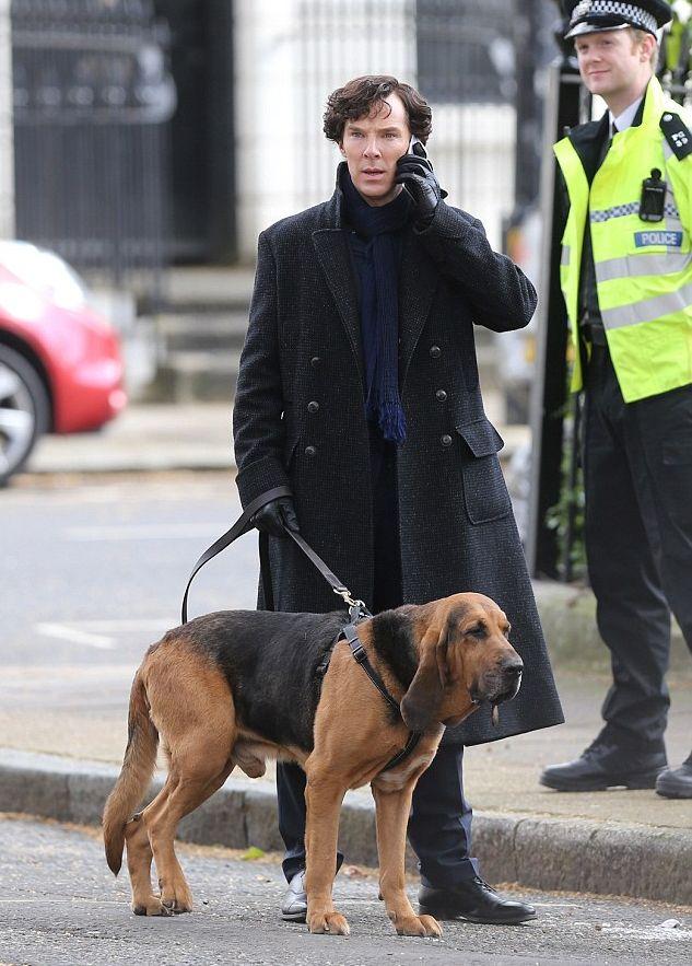 Sherlock: Benedict Cumberbatch e un cane sul set di Londra