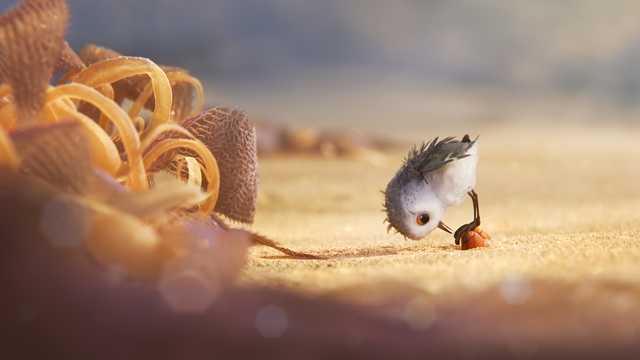 Piper: una tenera immagine del corto Pixar