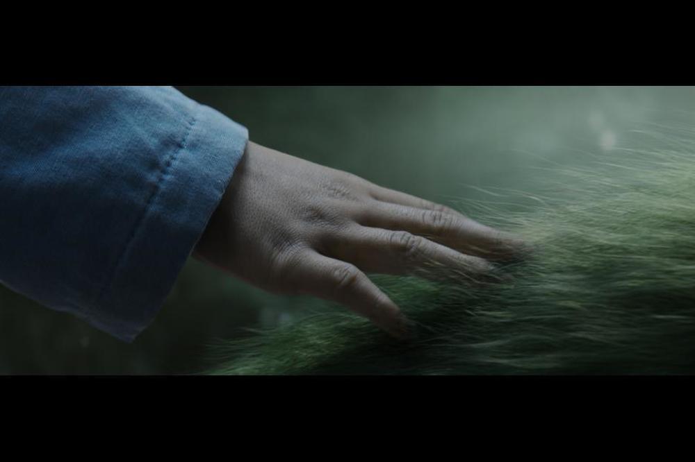 Il drago invisibile: un'immagine tratta dal film