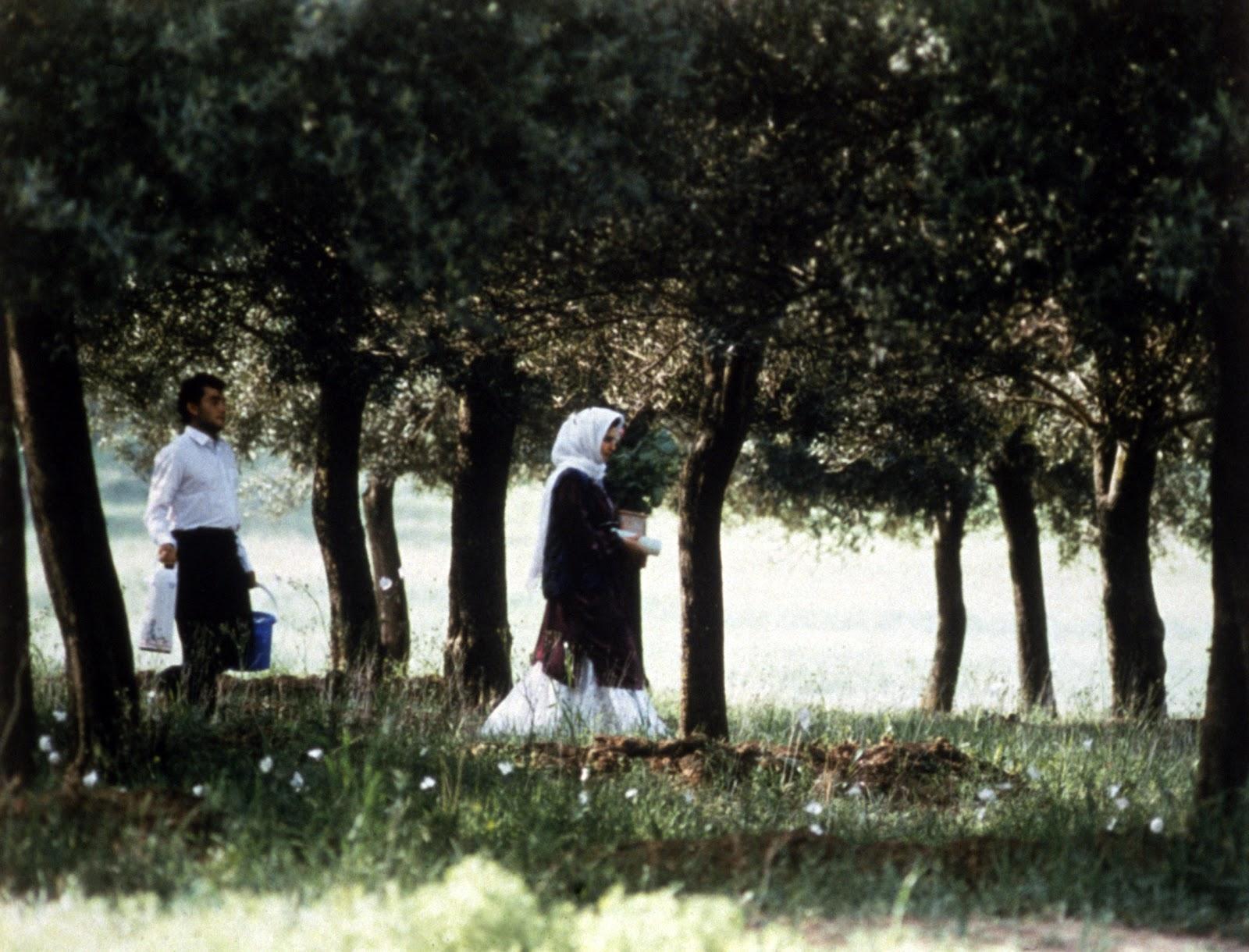 Sotto gli ulivi, una scena del film di Kiarostami