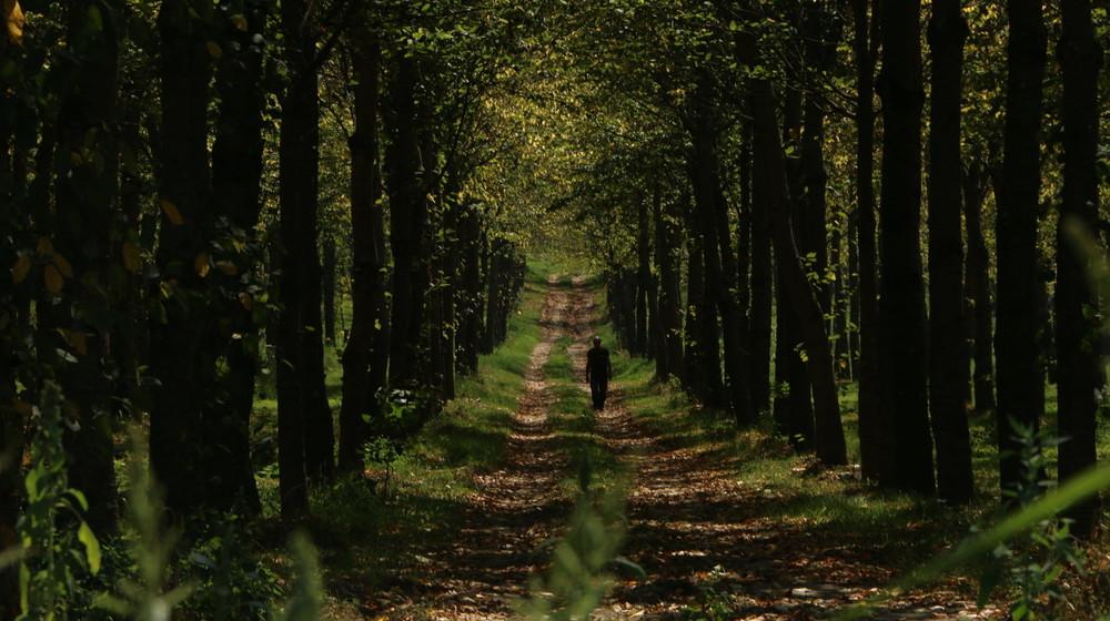 I volti della Via Francigena: un'immagine tratta dal documentario