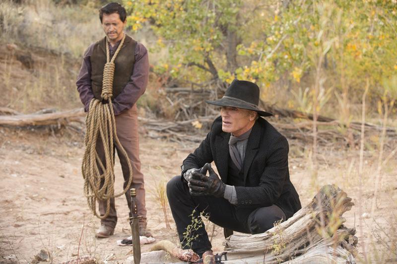 Westworld: una foto dell'attore Ed Harris in Dissonance Theory