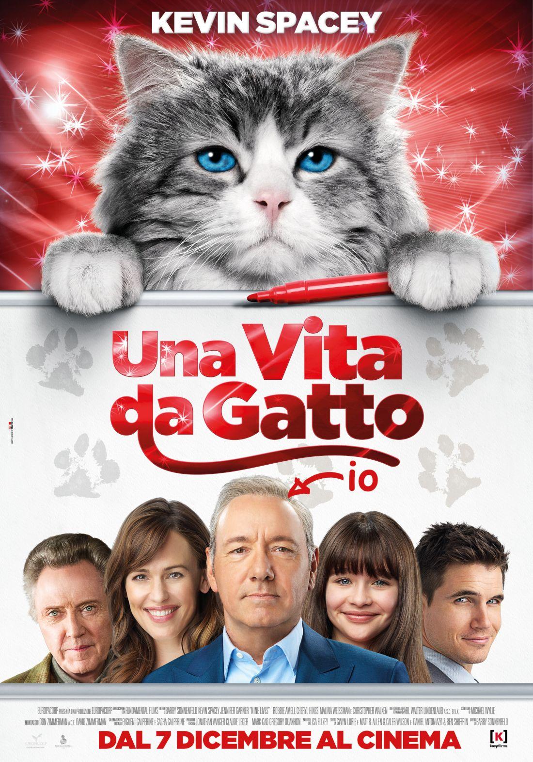 Locandina di Una vita da gatto