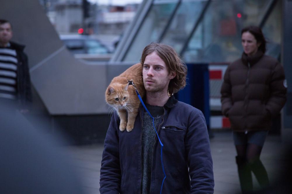 A spasso con Bob: Luke Treadaway in una scena del film