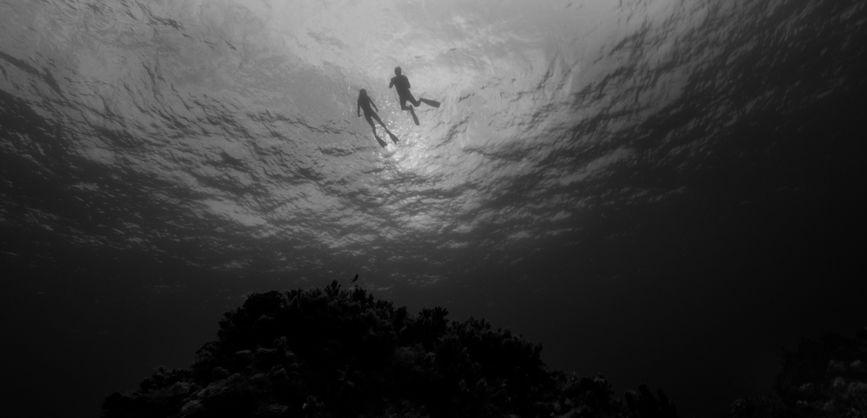Live Cargo: una suggestiva scena subacquea del film