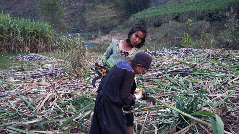 Ta'ang: un momento del documentario di Wang Bing