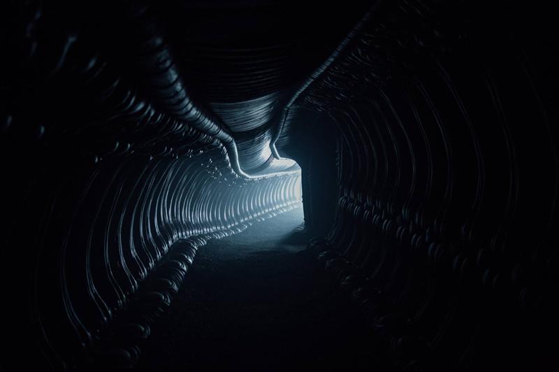 Alien: Covenant - Una nuova foto del film