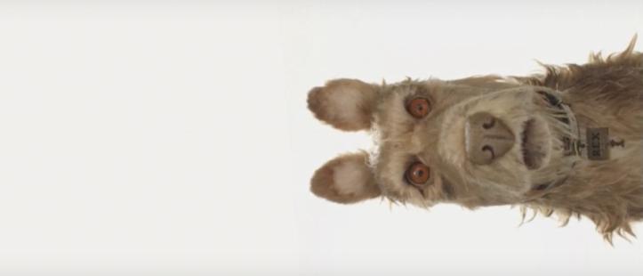 Isle of Dogs: la prima immagine del film