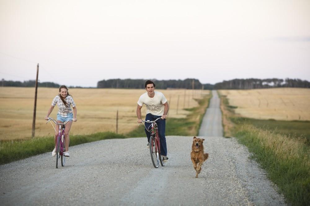Qua la zampa!: Britt Robertson e Luke Kirby in una scena del film
