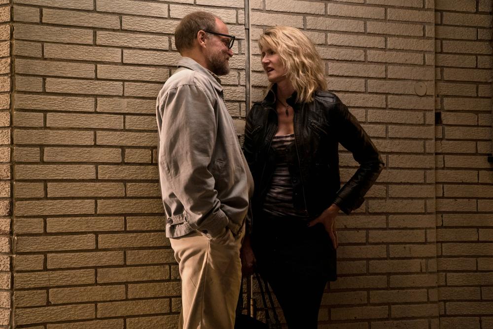 Wilson: Woody Harrelson e Laura Dern in un momento del film