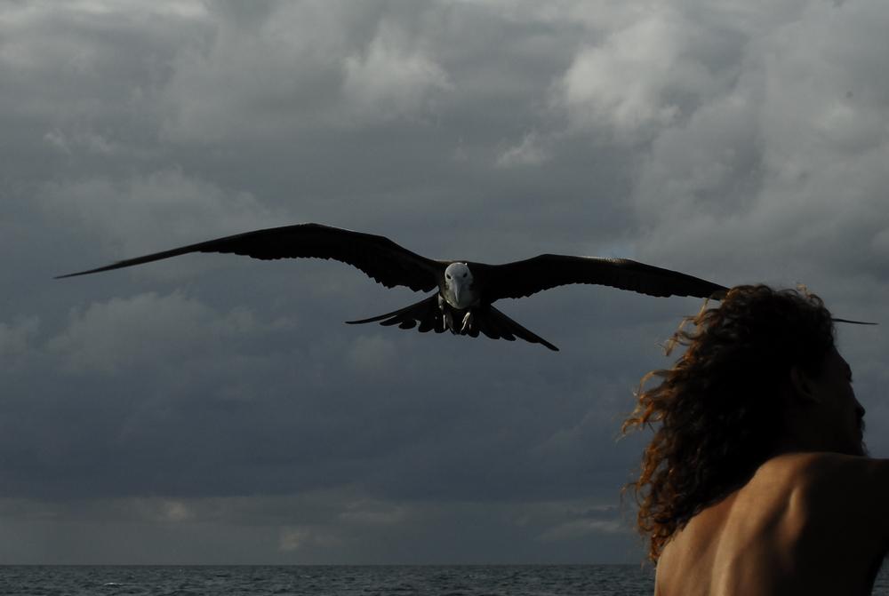 Alamar: un'immagine del documentario