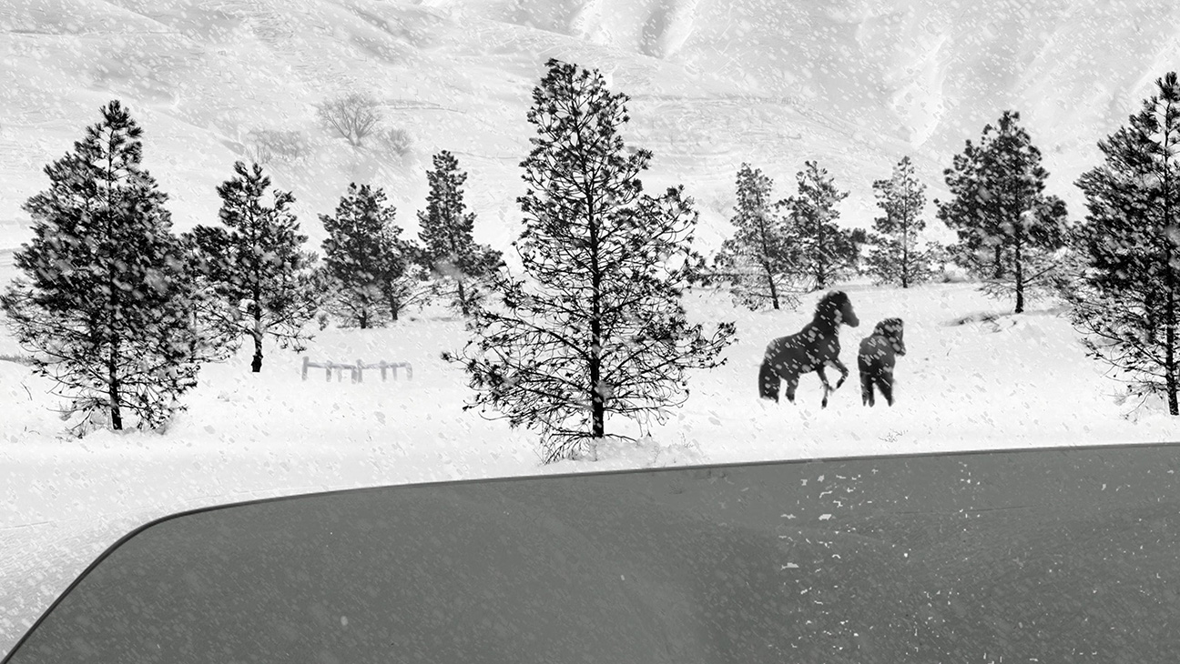 24 Frames - una scena dell'ultimo film di Kiarostami